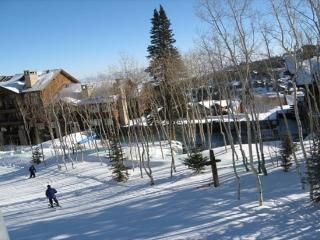 Luxury Top Rated Ski-in/Ski-Out in Deer Valley - Utah Ski Country vacation rentals