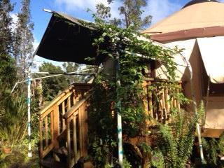Chic Eco Yurt Home + Gardens - Pahoa vacation rentals