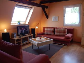 Vacation Apartment in Koblenz - 603 sqft, direct views to the Rhine River, great starting point for… - Vallendar vacation rentals