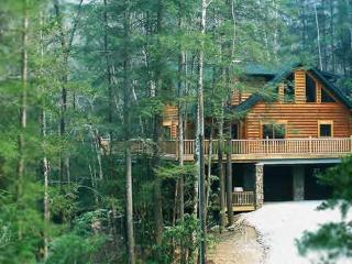 Independence Lodge ~ RA47309 - Nantahala Township vacation rentals