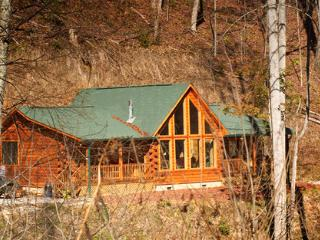 Call of the Wild ~ RA47282 - Bryson City vacation rentals