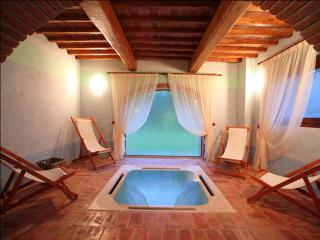 SPA+INDOOR POOL+SAUNA. VILLA set in NATURAL PARK - Rignano sull'Arno vacation rentals