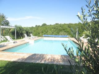 VILLA GLI OLIVI! From 8 to 18 PERFECT FOR GROUPS O - Panicale vacation rentals