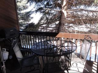 Red Pine Condo - Park City vacation rentals