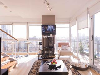 The Six Senses Penthouse in Palermo Soho - Buenos Aires vacation rentals