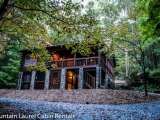 DEER MEADOW- 2BR/3BA- SECLUDED CABIN SLEEPS 8, HOT TUB, CHARCOAL GRILL, FIRE PIT, PING PONG, PET FRIENDLY, SATELLITE TV, WET BAR, GAS LOG FIREPLACE, WOOD BURNING STOVE, WIFI, WALKING DISTANCE TO THE TOCCOA RIVER! ONLY $109 A NIGHT! - Blue Ridge vacation rentals