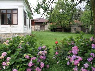 Spacious traditional Romanian house - Craiova vacation rentals