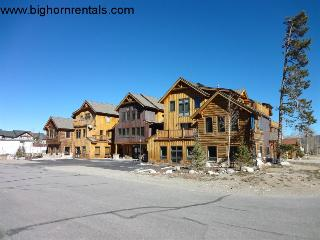 Mount Victoria Lodge #G - Frisco vacation rentals