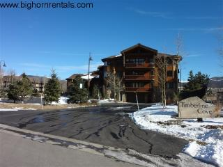 Timberline Cove #202 - Frisco vacation rentals