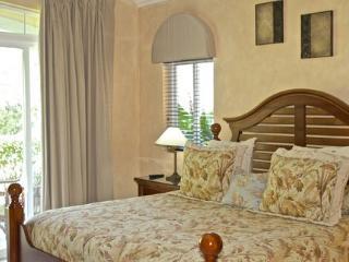 Los Suenos Resort Colina 11E - Herradura vacation rentals