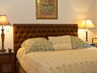 Los Suenos Resort Veranda 5E - Herradura vacation rentals
