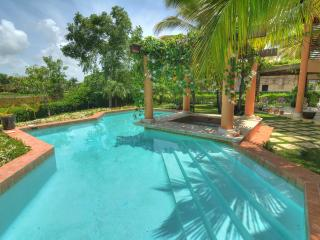 Carlitos Villa – 4 Bedroom in Tortuga Bay - La Altagracia Province vacation rentals
