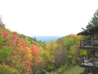 Mountain Condo Chalet - Cosby vacation rentals