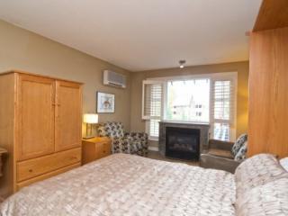 Glacier Lodge Luxurious Studio Suite sleeps 3 - British Columbia Mountains vacation rentals