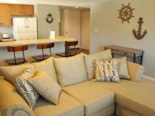Awesome Vacation Condo- Just Bought and Renovated..11241 - Myrtle Beach vacation rentals