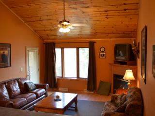 Eagle's Nest: Waterfront, Family Friendly, Value - Athelstane vacation rentals