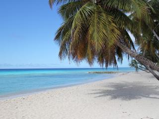 Barbados cheap holiday apartment  AC  2 min. beach - Dover vacation rentals