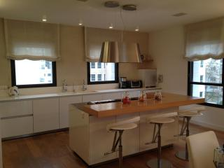 The Akiva Penthouse - Israel vacation rentals