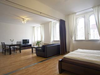 2 BDR APARTMENT OLD TONW SQUARE - Czech Republic vacation rentals