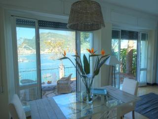 Amazing seaview property on Palmaria Island - Portovenere vacation rentals