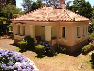 Gardens, flowers, awesome place by Golf Course!!! - Santo da Serra vacation rentals