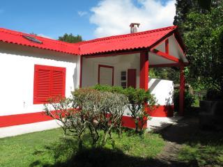 casa do lago - Povoação vacation rentals