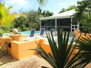 Pretty little oasis, near everything - Image 1 - Providenciales - rentals