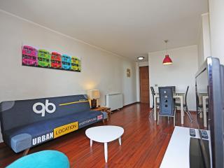 Apartamento Parque Forestal 9 Santiago Centro - Santiago vacation rentals