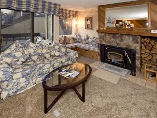 Mammoth Lakes 1 Bedroom & 1 Bathroom House (Bigwood #027) - Mammoth Lakes vacation rentals