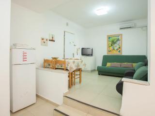 Center Raanana  1 bedroom n# 23 - Ra'anana vacation rentals
