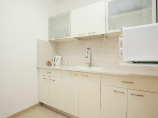 Center Raanana  1 bedroom n# 23 - Ra'anana vacation rentals