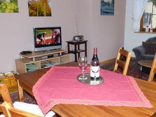 Ferienwohnung Julia - Steinach vacation rentals