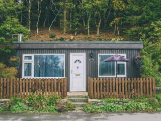 Far Havens (Chalet 61) - Aberdovey / Aberdyfi vacation rentals