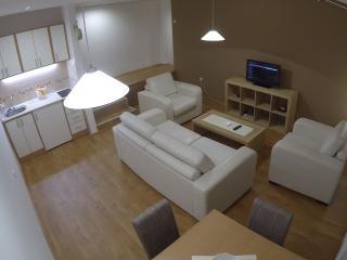 Lucky Apartment Center Novi Sad - Novi Sad vacation rentals