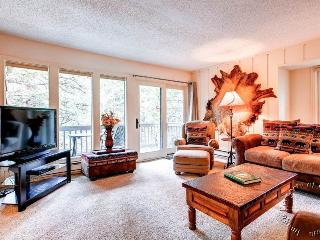 Tannenbaum by the River 206 by Ski Country Resorts - Summit County Colorado vacation rentals