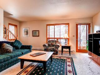 Pine Creek Townhomes D by Ski Country Resorts - Breckenridge vacation rentals