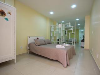★Raul 110 - Rio de Janeiro vacation rentals