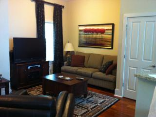 LSU Gameday Condo - Baton Rouge vacation rentals
