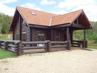 TAMAURA LODGE, pet-friendly cabin near fishing lake, enclosed garden, peaceful setting, Pentney Ref 916390 - Upper Marham vacation rentals