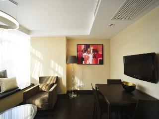 2 br service apartment in the city - Shanghai vacation rentals