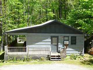 Crystal Creek Cabin w/Hot Tub near Cherokee - Cherokee vacation rentals
