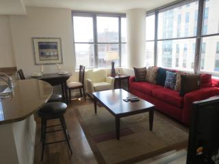 Lux Downtown Boston 1BR Apt w/pool - Boston vacation rentals