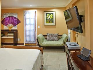 Almaden studio, downtown San Jose, promo $175/nt - San Jose vacation rentals