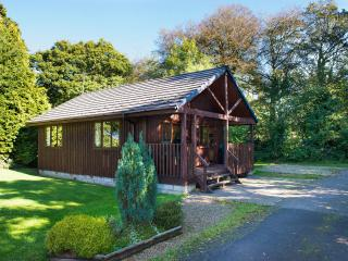 Lodge one - Bude vacation rentals