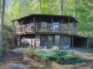 Bird House Cottage - Nebo vacation rentals