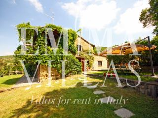 Typical Tuscan Stone Farmhouse Near Cortona - Cortona vacation rentals
