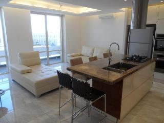 Amazing 2 Br, clean, modern, excellent location - Jerusalem vacation rentals