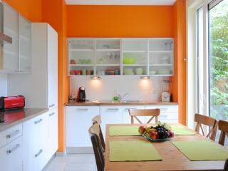 Exceptional 3Bed apartment, Brussels center - Ixelles vacation rentals