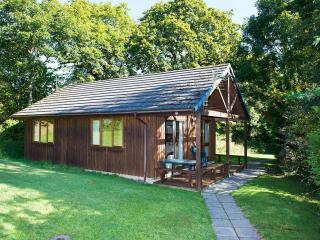 Lodge Four - Bude vacation rentals