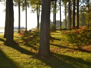 Adorable Potomac Cottage, Central AC, Water Access - Tall Timbers vacation rentals